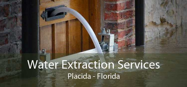 Water Extraction Services Placida - Florida