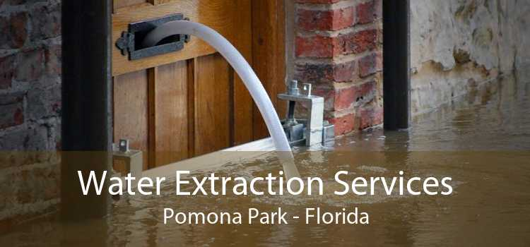 Water Extraction Services Pomona Park - Florida