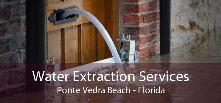 Water Extraction Services Ponte Vedra Beach - Florida