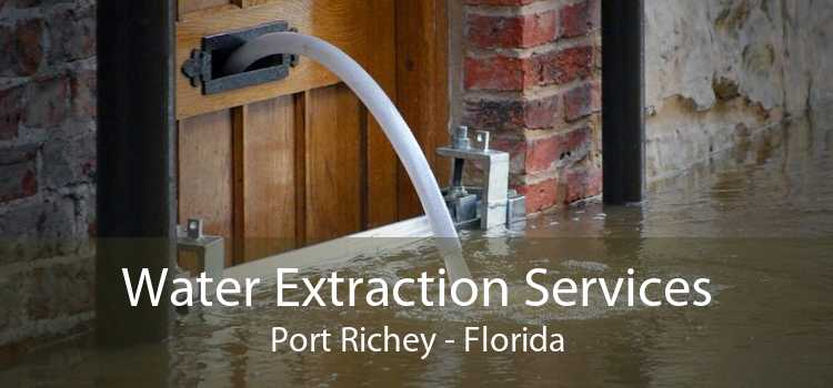 Water Extraction Services Port Richey - Florida