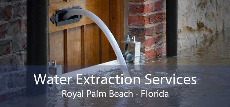 Water Extraction Services Royal Palm Beach - Florida