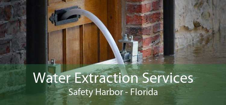 Water Extraction Services Safety Harbor - Florida