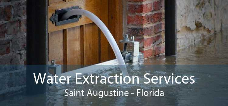 Water Extraction Services Saint Augustine - Florida