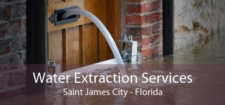 Water Extraction Services Saint James City - Florida