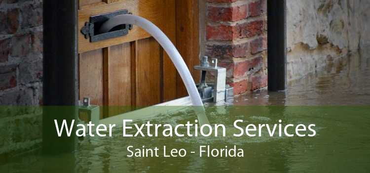 Water Extraction Services Saint Leo - Florida