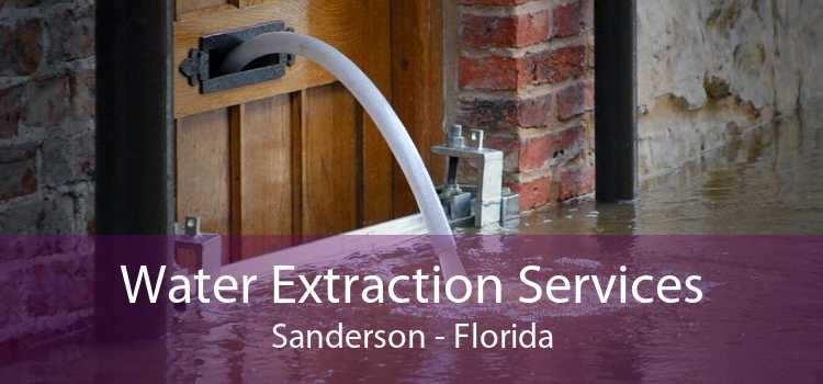 Water Extraction Services Sanderson - Florida