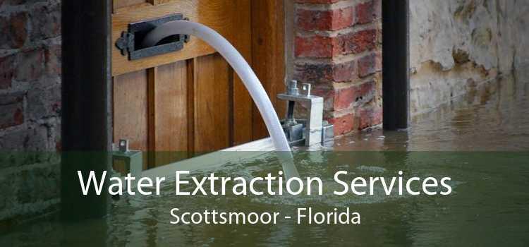 Water Extraction Services Scottsmoor - Florida