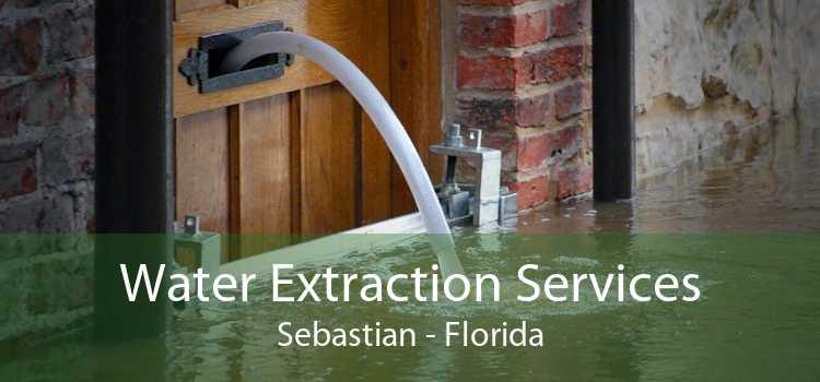 Water Extraction Services Sebastian - Florida