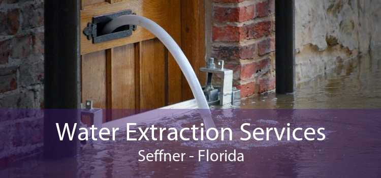 Water Extraction Services Seffner - Florida