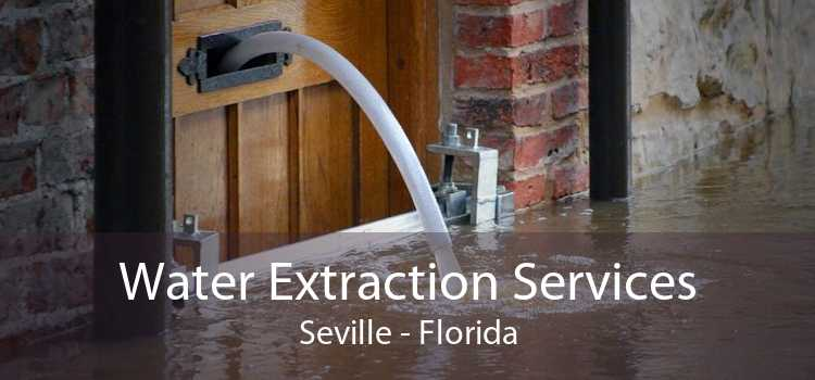 Water Extraction Services Seville - Florida