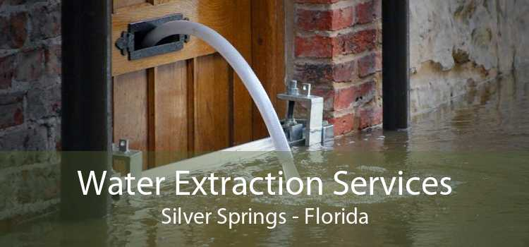 Water Extraction Services Silver Springs - Florida
