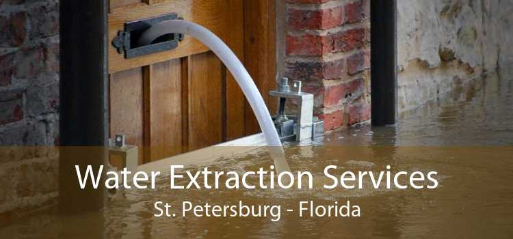Water Extraction Services St. Petersburg - Florida