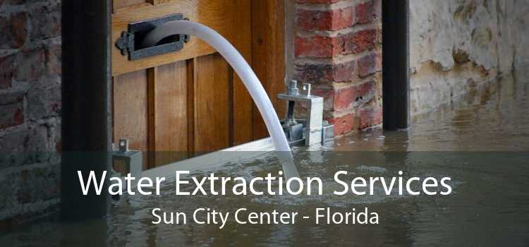 Water Extraction Services Sun City Center - Florida