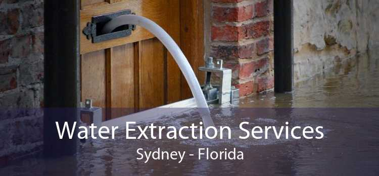 Water Extraction Services Sydney - Florida