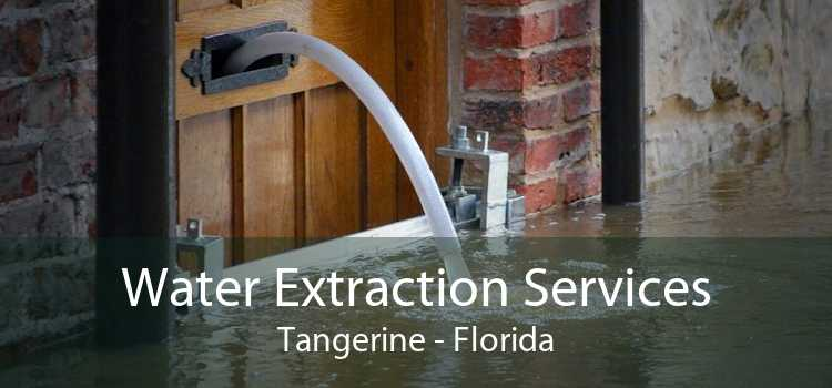 Water Extraction Services Tangerine - Florida