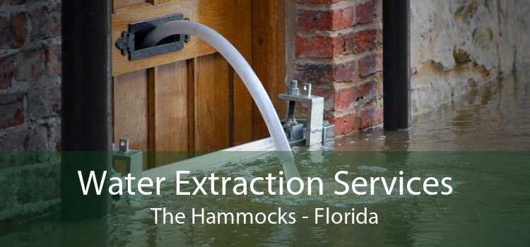 Water Extraction Services The Hammocks - Florida