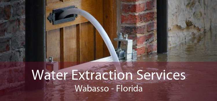 Water Extraction Services Wabasso - Florida
