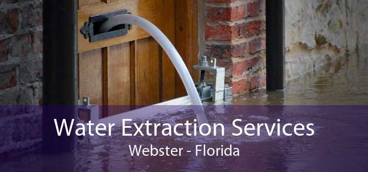 Water Extraction Services Webster - Florida