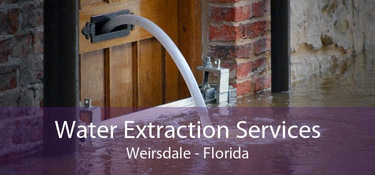 Water Extraction Services Weirsdale - Florida