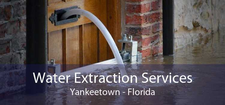 Water Extraction Services Yankeetown - Florida